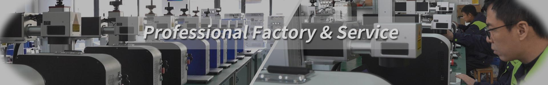 Professional Factory & Service
